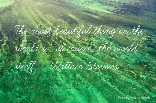 """The most beautiful thing in the world is, of course, the world itself.""  - Wallace Stevens"