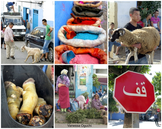 chefchaouen1 Collage
