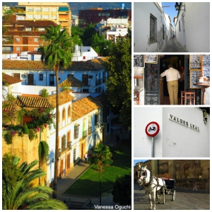 Cordoba collage 2