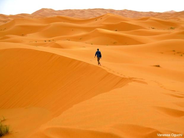 desert 12 copy