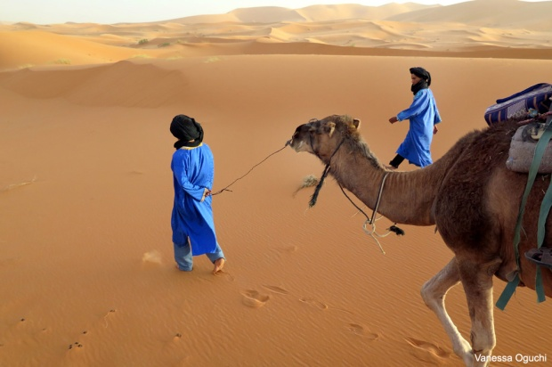 Guides leading the camels