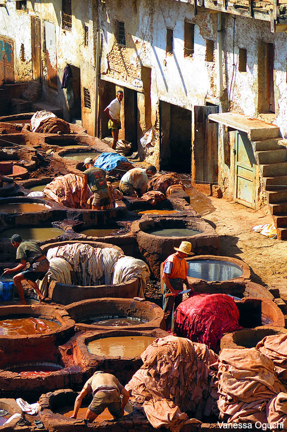 tanneries closeup copy
