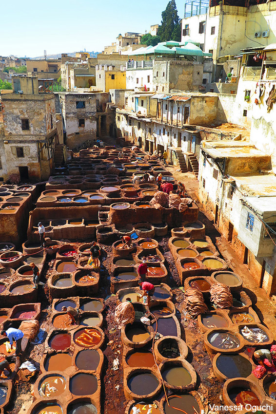 tanneries copy