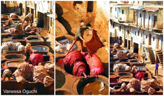 Views of the tanneries