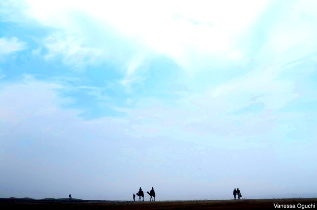 camel silhouettes 2