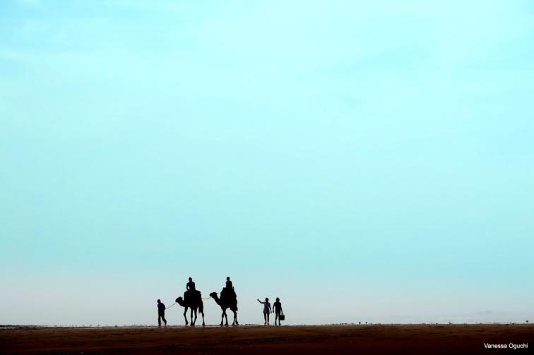 Camel stroll by the beach in Essaouira