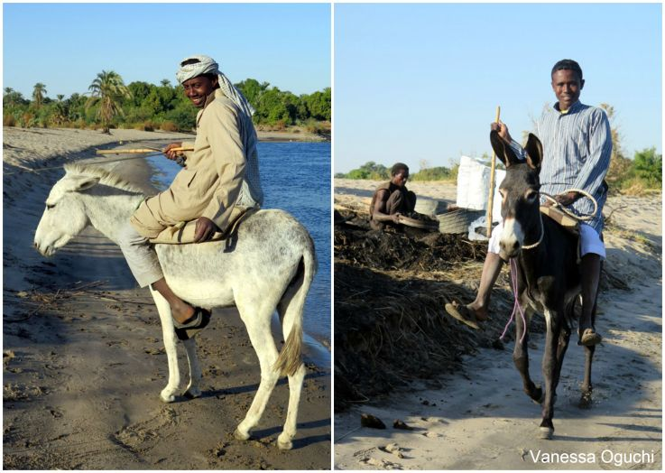 Here are the photos I took of the guy on the donkey
