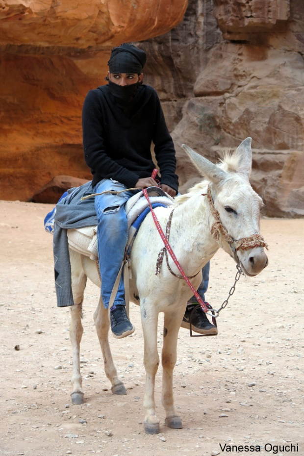 donkey boy copy